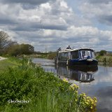 Chichester canal Kingfisher boat