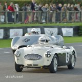 Healey at Goodwood